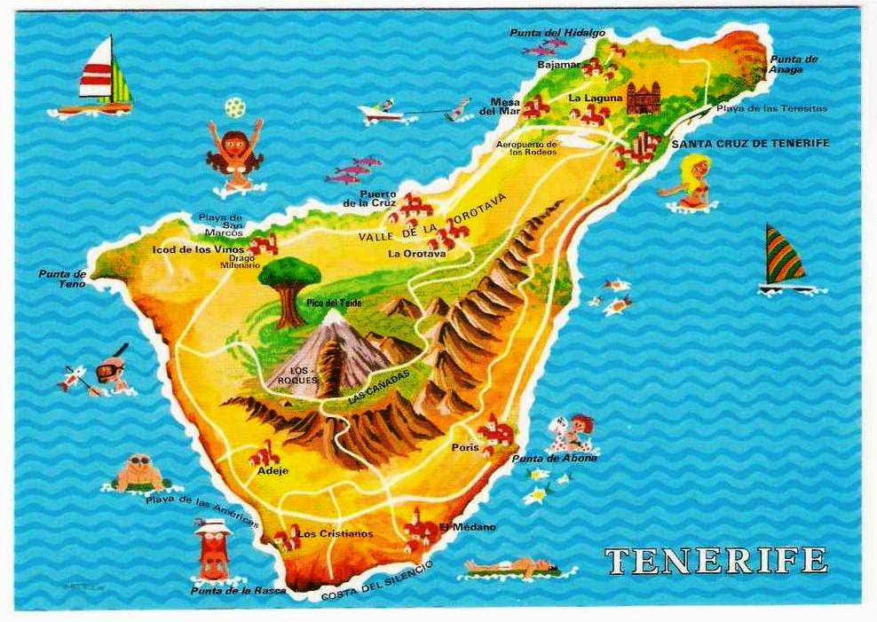 Tenerife Canary Islands cipressa Card