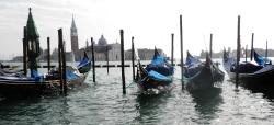 Gondolas Canale di San Marco Venice