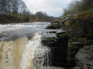Aysgarth Falls Yorkshire