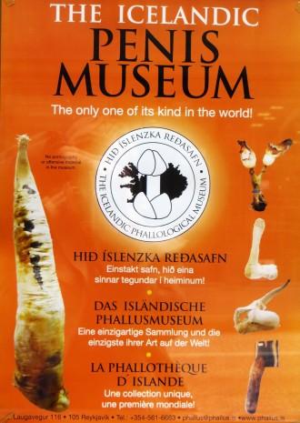 Icelandic Penis Museum Reykjavik