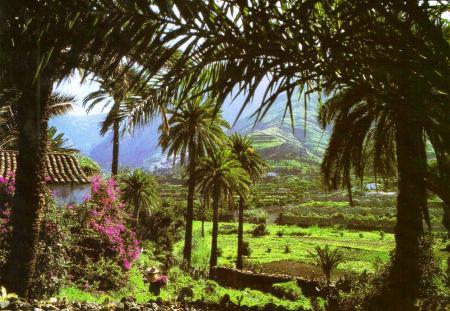 Gran Canaria Canary Islands Spain