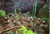 Jameos del aqua Lanzarote Canary Islands
