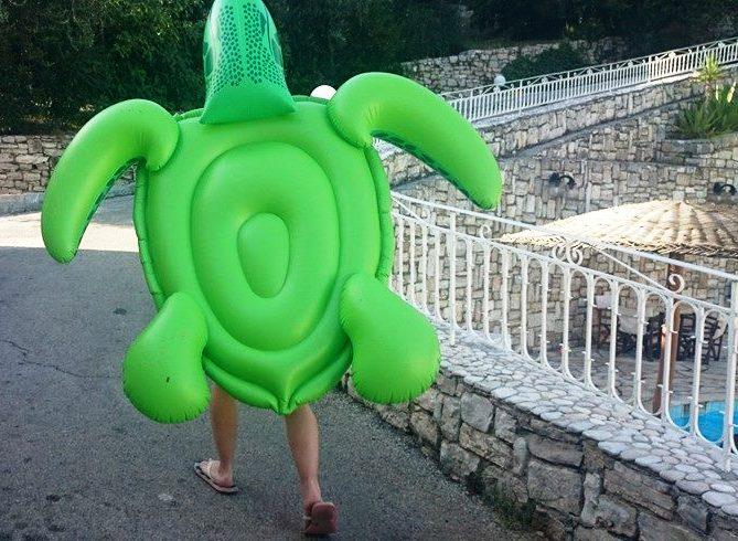Corfu Turtle