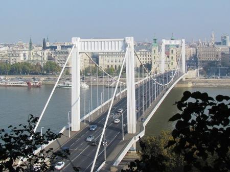 Budapest Hungary Elizabeth Bridge