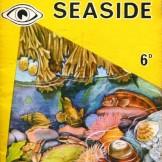 I Spy At The Seaside