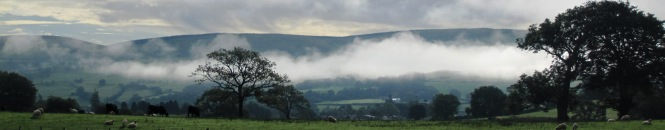 Bala Wales