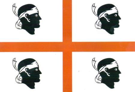 Sardinia Flag Postcard