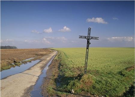 Agincourt Battlefield