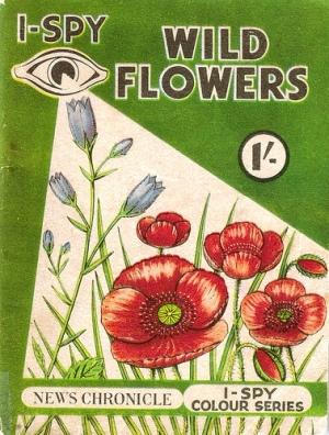 i spy wild flowers