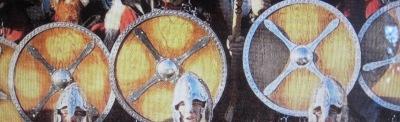 Norway Viking Shields
