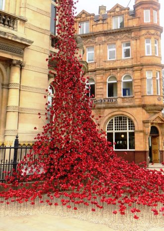 Ceramic Poppies Hull