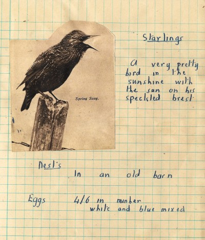 Dads Starling Page