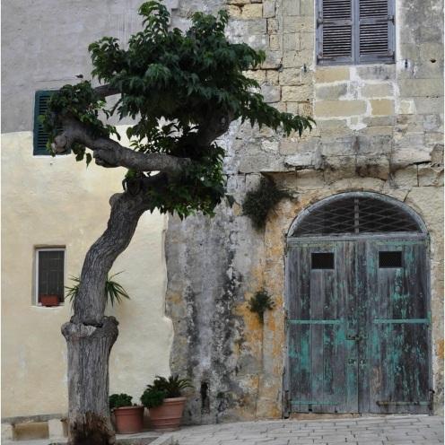 Mdina Door
