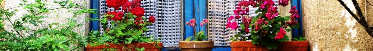 Spain, Window Gardens