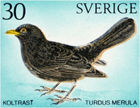 Sweden Blackbird Postage Stamp