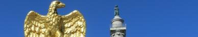 Napoleon and Imperial Eagle 1