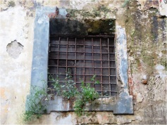 Naples Window 2