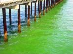 Southwold Pier Water