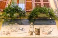 Rimini Borgo Window 1