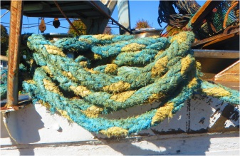 Rimini Ropes