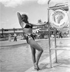 1954 Bikini 4