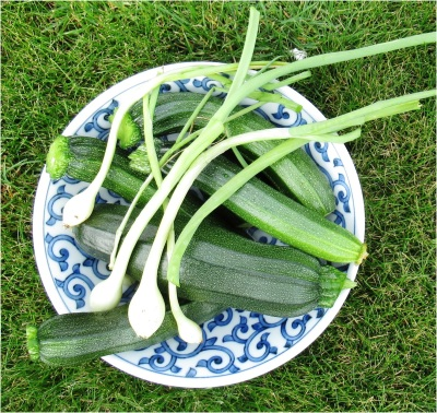 Courgette and Spring Onion