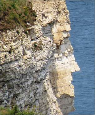 Flamborough Head Lady