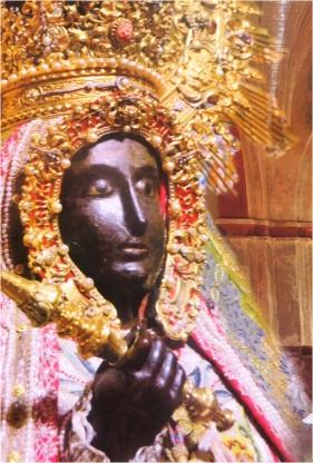 Guadalupe 07