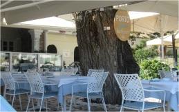 Kassiopi Taverna