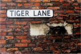 Beverley Tiger Lane