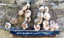 Shell sails