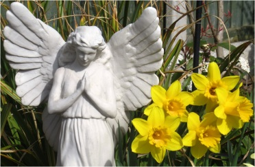 Angel with daffodils