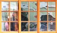 Hallstatt Widow Reflection