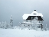 Black Forest Snow 07